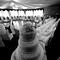 Wedding(28of 40)